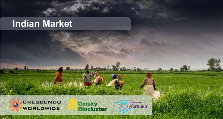 Индийские компании ищут партнёров в Псковской области