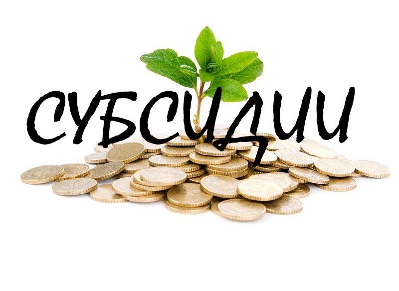 Субсидирование части затрат СМП, связанных с участием в выставочной деятельности